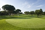 Golf Clubs in Croydon - Things to Do In Croydon